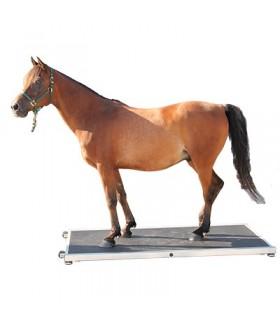 Pferdewaage PW 1500
